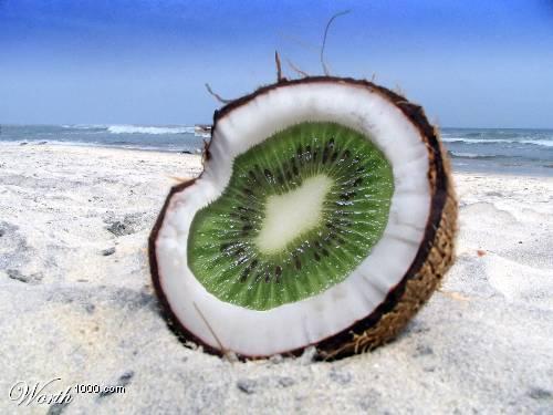 Photoshop gyümölcs: kiwi-kókusz